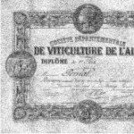 1900: du vin rouge à Pougny